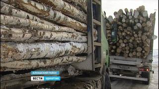 Полицейские и инспекторы лесной охраны начали проверку транспорта, перевозящего древесину