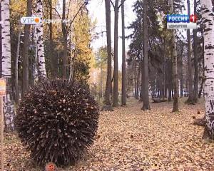 Лэнд-арт в ижевском парке Космонавтов